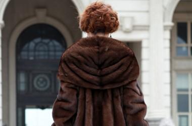 Dipol, шоу-рум женской одежды